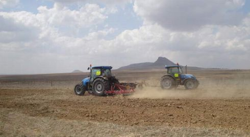 conventional seeding